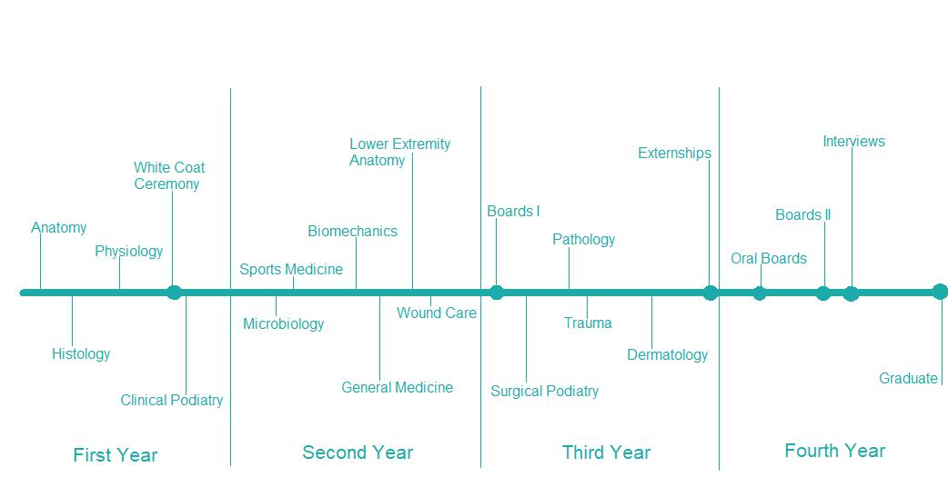PrePodiatryLife timeline